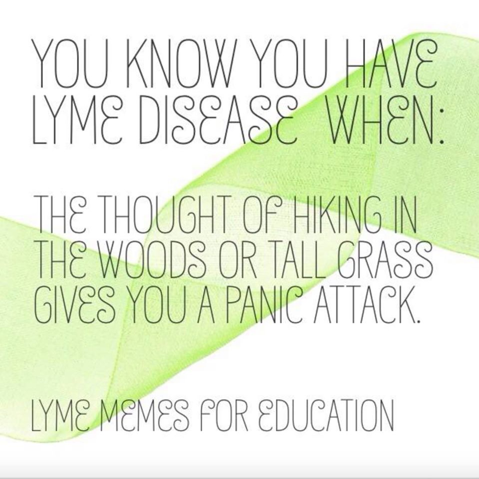 15 Things Every Mom Needs to Know About Lyme Disease – All Natural Mom